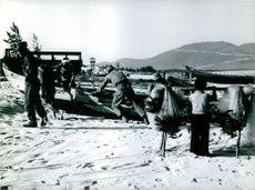 Soldiers at the beach in Vietnam.