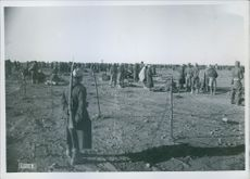 North Africa: concentration camps for captured Britons  detainees