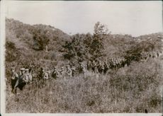 Japanese soldiers holding their guns and marching through the shrubs during the Russo-Japanese War, 1904.