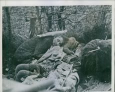Belgian civilians killed by counter-attacking Nazzis.