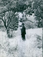 Gaston Dominici standing in the forest.