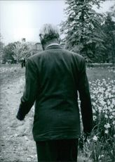 A view of Prime Minister Maurice Harold Macmillan back as he leaves his house, birch Grove in Susseks for a walk round the garden, 1953.