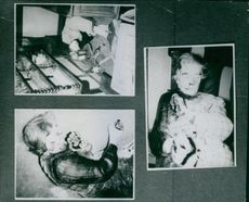 Photographs of ded bodies.1965