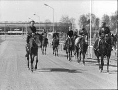 Riders and horses at Täby race course Stockholm