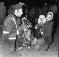 A policeman and his German shepherd gets acquainted with a student on a course of dog ownership for children.