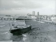 Crowd gather by the Brighton beach to see the Greek freighter.