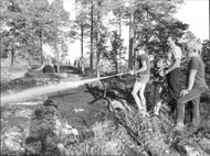 Boys help with extinguishing the fire fighters in the forest area at Vårberg