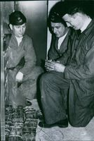 "Kurt Rehder, Yngve Stringhagen and Hugo Larsson, the ""black thread"" of the bullet that wiped out the golden league"