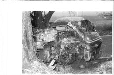 The car accident at Ericsberg. The tree the driver crashed into the left corner of the picture