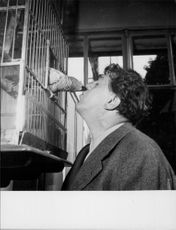 Michel Simon with bird.
