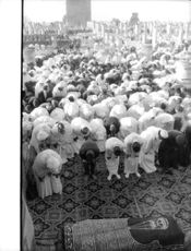 People paying respect during Mohammed V of Morocco's funeral.