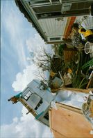 Hurricane Andrew has made his mark in Florida