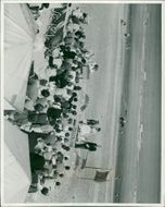 View of people in the event.