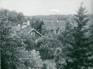 Ornö. They in the leafy greenery embedded the bell garden and the school house