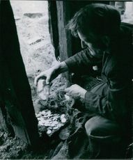 Man collecting coins. 1951