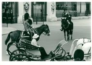 Trooping the Colour (outside the buckingham Palace)