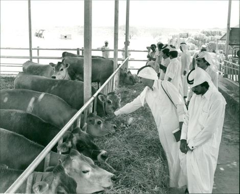 Nizwa Agricultural Research Station