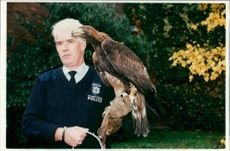 Alex, Golden Eagle with Paul Beecroft.