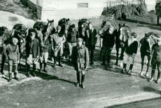 Ridskolan in Strömsholm. The participants in the horse service course at Strömsholm with their horses