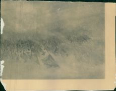 The grass was burning during WWI.