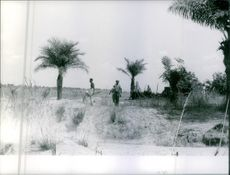 Congo people whose defending their land were in patrol and observing the territory land.