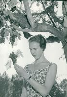 Princess Maria Gabriella admiring the branches and fruits (grapes).