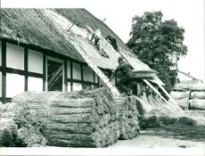Thatched roofer