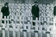 A cemetery where soldiers who died from war are buried.