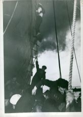 People climbing on ship with the help of ladder.