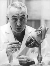 A doctor pointing at a heart model.