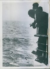 Men leaning on railing and looking upon sea.
