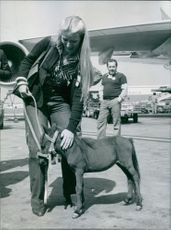 A woman petting a colt in the airplane tarmac.