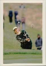 Catrin Nilsmark during the Solheim Cup.