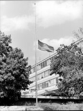 American flag on half-rod at the United States embassy after Kennedy's death