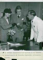 Dr. G. Erdtman demonstrates a cutting edge of a strain stew for the Crown Prince at the University of Technology's cellulose laboratory