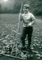 6 years old Prince Andrew collecting maple leaves.