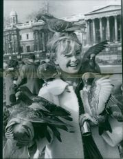 Vintage photo of a contestant for Miss World contest in London with doves on her. Photo taken on Nov. 9, 1960.
