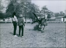 Marta Kristen watched as Buzz Henry, a stuntman, falls off the horse, 1963.