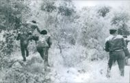Soldiers running in the forest of Lebanon, 1970.