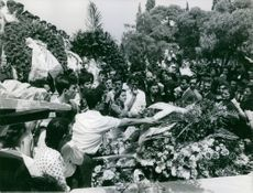 Crowd pitching in flowers. Greece, 1966.