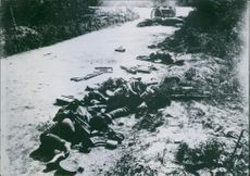 Soldiers lay lifeless on the side of the road. 1918.