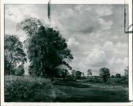 Constable Lionel works by:the tate gallery.
