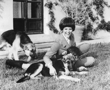 Claudia Cardinale laughing with her son and her pets.