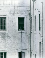 Franca Viola seen with a lady and a man standing at the window of the building