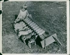Child giving milk to the domestic pigs.