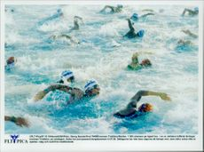 Ironman Triathlon. The start. 1,500 swimmers on the open sea in one of the world's toughest races