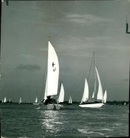 The Competing Yachts on the Crouch.