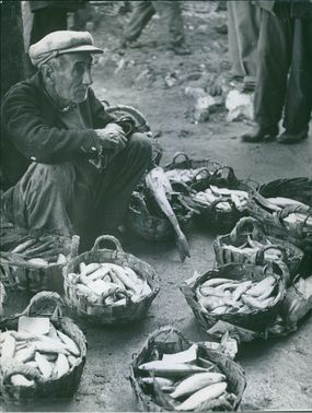 Man selling fishes on roadside.
