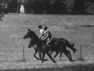 Princess Anne doing horse ridding with man.