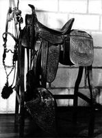 Saddle hanging on a table.